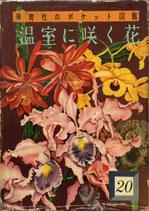 温室に咲く花 保育社のポケット図鑑