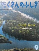 川は道 森は家  伊藤健次  たくさんのふしぎ378号