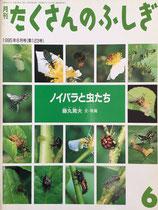 ノイバラと虫たち    藤丸篤夫   たくさんのふしぎ123号