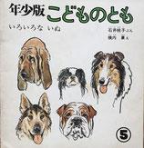 いろいろないぬ 石井桃子 横内襄 こどものとも年少版26号
