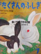庭にできたウサギの国 「かがくのとも」小学生版たくさんのふしぎ4号