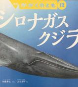 シロナガスクジラ かがくのとも585号