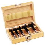 Forstnerbohrer 5-teilig hartmetallbestückt D. 15, 20, 25, 30, 35 mm Holzkasette PROMAT
