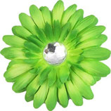 Green Daisy Doo