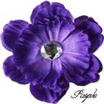 Purple Pretty Peony