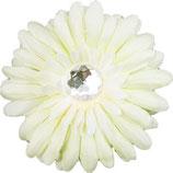 White Daisy Doo