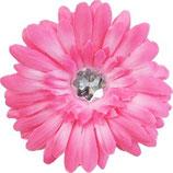 Pink Daisy Doo