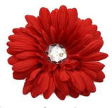 Red Daisy Doo
