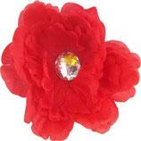 Red Pretty Peony