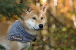SnuggleUp für Hunde