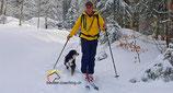 Schnee Touren mit Hund