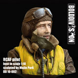 RCAF pilot bust