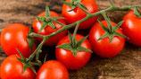 Pomodori : grappolo e ciliegini