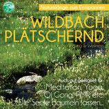Wildbach plätschernd - Naturklänge zur Entspannung & Wellness (Tunesdy-Bestellnummer: SN03)