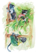 Muscimuscella / Kitty •  illustrazioni di Chiara Di Palo • dal libro Cùntame nu cuntu / Tell me a story, di Annamaria Gustapane