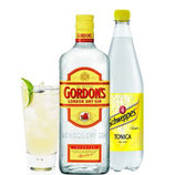 GIN TONIC KIT GORDON'S