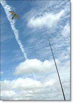 Hökattrapp Hawk-Kite inkl 7 m glasfibermast & fäste