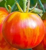 Tigerella (tomate bigarrée rouges zébré d'orange)