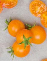 gajo de melon (tomate cerise orange)