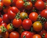 Brin de Muguet (tomate cerise cocktail)