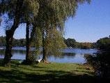 Lake Improvement Fund