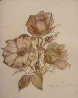 Gabriella Kopias:Rose, Aquarell