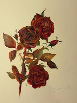 Gabriella Kopias:Rose, Öl auf Papier