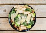 19. Caesar Salat
