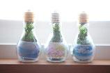 light bulb プリント