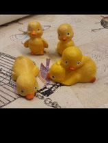 Vier kleine Küken als Set Fliegly,Stehly,Plattly und Packerl