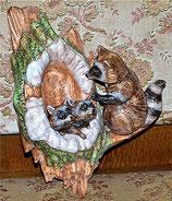 Waschbär mit Baumhöhle und Kinder