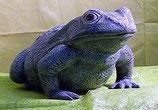 Frosch Lulu