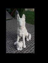 Schäferhund Anka mit Junge