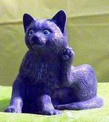 Katze Mao sitzend