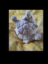 Schildkrötenhaufen