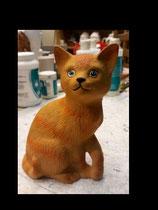 Katze Fioni sitzend