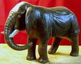 Elefant M