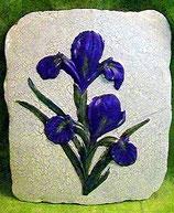 Wandkachel Iris