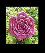Rose Nelia