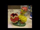 Küken Mara  mit Eierschale