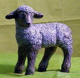 Schaf stehend links schauend