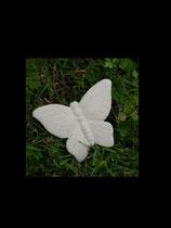Schmetterling Miniar