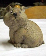 Hamster 2 Teilig