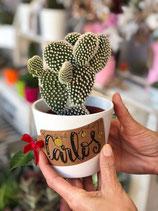 cactus con tarjeta personalizada