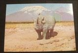 AK Nashorn -  Kenia ng
