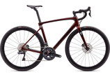 SPECIALIZED ROUBAIX EXPERT Modell 2020