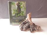 Buch Baumheilkunde, Heilkraft, Mythos & Magie der Bäume