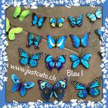 Wanddecor Schmetterling