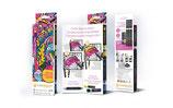Chameleon introductie set + Zen kleur boekje