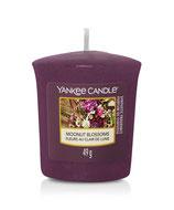 Moonlit Blossoms -  Votivkerze Yankee Candle